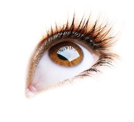 Photo pour Beautiful Eye of Woman over white background - image libre de droit
