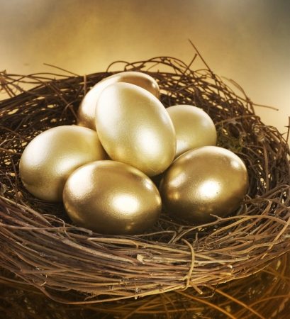 Photo pour Golden Nest Eggs - image libre de droit