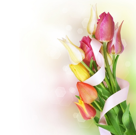 Photo for Spring Tulip Flowers bunch - Royalty Free Image