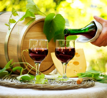 Photo pour Red Wine and Cheese  Romantic Lunch Outdoor - image libre de droit