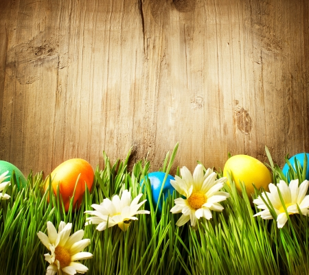 Colorful Easter Eggs in Spring Grass and Flowers over Wood