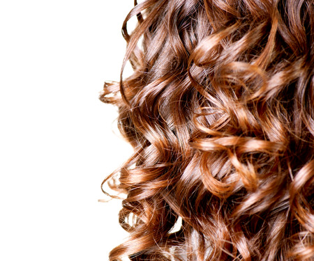 Photo pour Hair isolated on white  Border of Curly Brown Long Hair  - image libre de droit