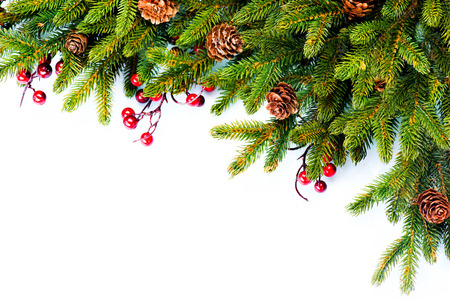 Foto de Christmas  Evergreen Fir tree Border Design - Imagen libre de derechos