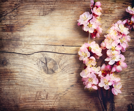Photo for Spring Blossom over wooden background - Royalty Free Image