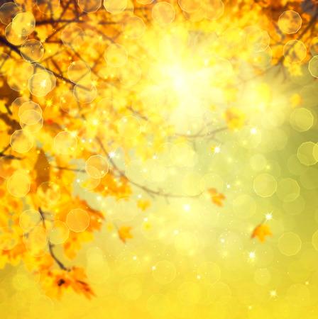 Foto de Autumn. Blurred abstract autumnal background - Imagen libre de derechos
