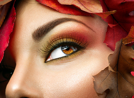Photo pour Autumn make up for brown eyes. Closeup fashion makeup - image libre de droit