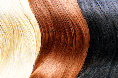Photo for Hair colors palette. Blonde, brown and black hair colours - Royalty Free Image