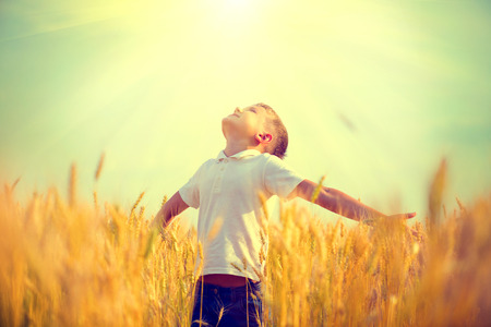 Foto de Little boy on a wheat field in the sunlight enjoying nature - Imagen libre de derechos