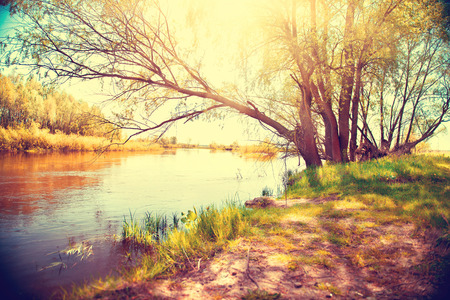 Photo pour Autumn landscape with a river. Beautiful scene - image libre de droit