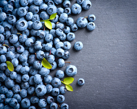 Photo for Blueberry border design. Blueberries background - Royalty Free Image