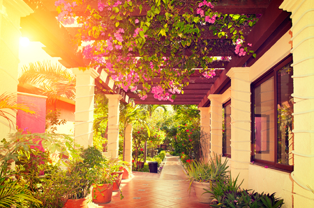Foto de Beautiful vintage landscaped terrace of a house with flowers - Imagen libre de derechos