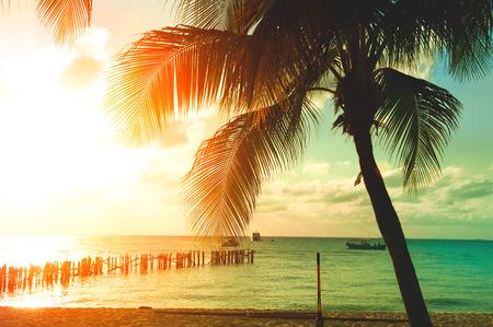 Foto de Sunset beach with palm trees and beautiful sky. Tourism, travel, vacation concept - Imagen libre de derechos
