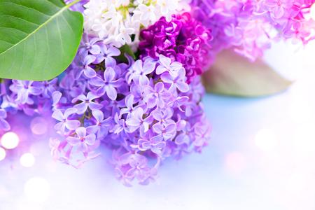 Foto de Lilac flowers bunch over blurred background - Imagen libre de derechos