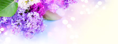 Foto de Lilac flowers bunch over blurred background - Imagen libre de derechos