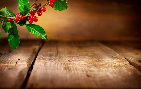 Photo pour Coffee background. Real coffee plant on wooden table - image libre de droit