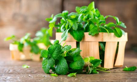 Photo pour Mint. Bunch of fresh green organic mint leaf on wooden table closeup - image libre de droit