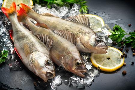 Foto de Fresh fish on ice with aromatic herbs, spices, salt. Raw perches on dark slate tray - Imagen libre de derechos