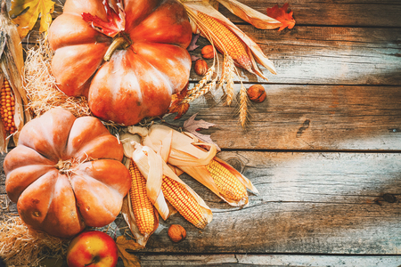 Foto de Thanksgiving day background. Orange pumpkins over wooden background - Imagen libre de derechos