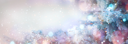 Photo pour Winter tree holiday snow background. Beautiful Christmas border art design - image libre de droit