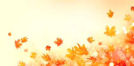 Foto de Autumn background. Fall abstract background with colorful leaves and sun flares - Imagen libre de derechos