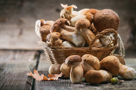 Photo for Ceps mushroom. Boletus closeup on wooden rustic table - Royalty Free Image