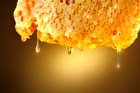 Photo pour Honey dripping from honey comb on yellow background. Thick honey - image libre de droit