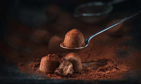 Photo for Chocolate truffles. Homemade fresh truffle chocolate candies with cocoa powder - Royalty Free Image