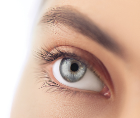 Foto de Young woman blue eye closeup. Macro eye looking up, isolated on white background - Imagen libre de derechos