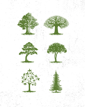 Illustration pour Big collection of tree illustrations, pine trees, evergreen trees, grass and other type of trees - image libre de droit
