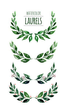 Illustration for Watercolor hand drawn laurels.Colorful vector illustration isolated on white background - Royalty Free Image