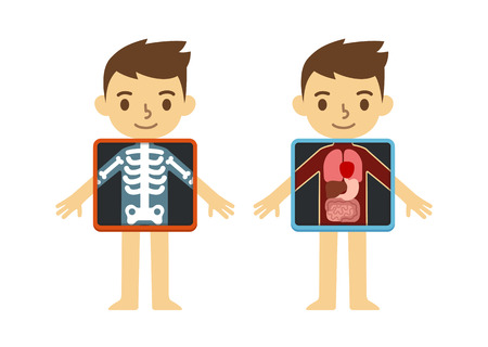 Illustration pour Two illustrations of cute cartoon boy with x-ray screen showing his internal organs and skeleton. Element of educational infographics for kids. - image libre de droit