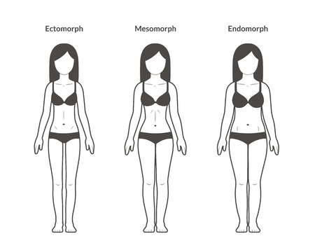 Illustration for Female body types: Ectomorph, Mesomorph and Endomorph. Skinny, fit and overweight build. Fitness and health illustration. - Royalty Free Image