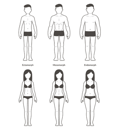Ilustración de Male and female body types: Ectomorph, Mesomorph and Endomorph. Skinny, muscular and fat bodytypes. Fitness and health illustration. - Imagen libre de derechos
