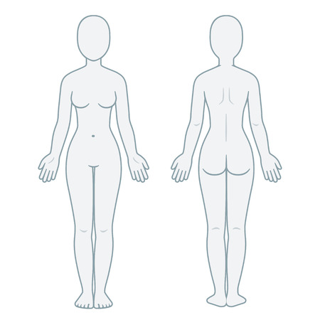 Ilustración de Nude female body front and back view. Blank woman body template for medical infographic. Isolated vector illustration. - Imagen libre de derechos