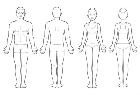 Illustration pour Male and female body chart, front and back view. Blank human body template for medical infographic. Isolated vector clip art illustration. - image libre de droit