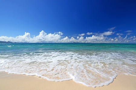 Photo for Gorgeous Beach in Summertime - Royalty Free Image