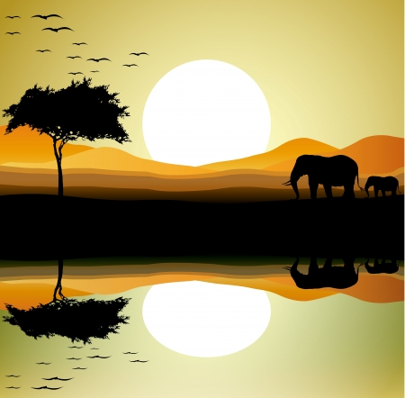 Photo pour beauty safari of elephant with landscape background - image libre de droit