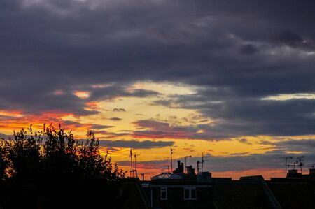 Foto de Silhouetted trees and tv aerials on rooftops in a English town at sunset - Imagen libre de derechos