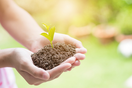 Photo for Soil cultivated earth, ground, agriculture Field land background, Organic gardening, agriculture. Hand holding seedling in new life concept. - Royalty Free Image