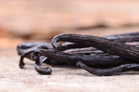 Photo for vanilla pods - Royalty Free Image