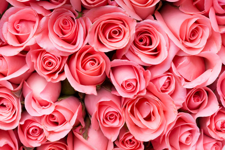 Photo for pink rose flower bouquet background - Royalty Free Image