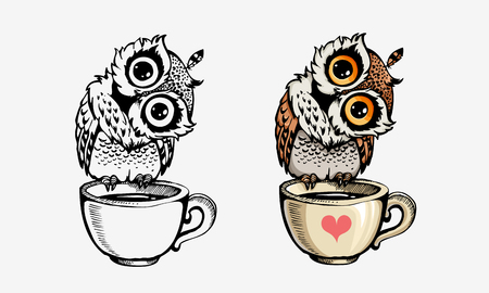 Illustration pour Cute owls collection color and line isolated on white. For coloring books, posters, print, t-shirt design element - image libre de droit