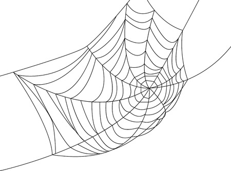 Illustration for Spider web isolated on white for Halloween design - Royalty Free Image