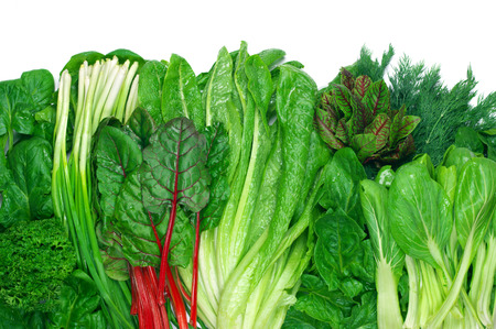 Photo pour Various green leafy vegetables in row on white background. Top view point. - image libre de droit