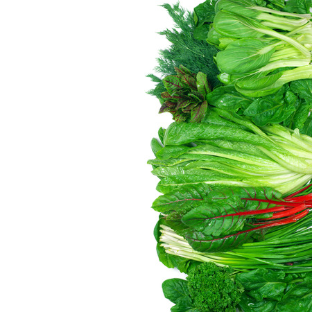 Photo for Various green leafy vegetables in row on white background. Top view point. - Royalty Free Image