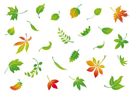 Illustration pour set of vector autumn leaves - image libre de droit