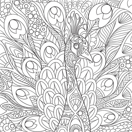Illustration for stylized cartoon peacock with gorgeous feathers and royal crown. Sketch for adult antistress coloring page.doodle,  floral design elements for coloring book. - Royalty Free Image