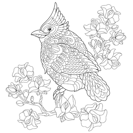 Ilustración de Coloring book page of northern red cardinal bird sitting on cherry blossoming tree branch. Freehand sketch drawing for adult antistress colouring with doodle and zentangle elements. - Imagen libre de derechos