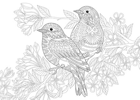 Illustration pour Coloring page of two birds. Freehand sketch drawing for adult antistress colouring book with doodle and zentangle elements. - image libre de droit