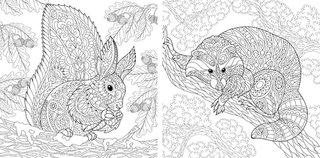 Illustrazione per Coloring Pages. Coloring Book for adults. Colouring pictures with squirrel and raccoon. Antistress freehand sketch drawing with doodle and elements. - Immagini Royalty Free